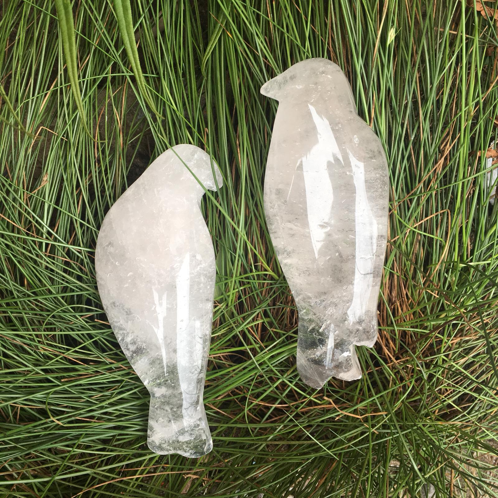 Stones from Uruguay - Clear Quartz Bird Cabochon