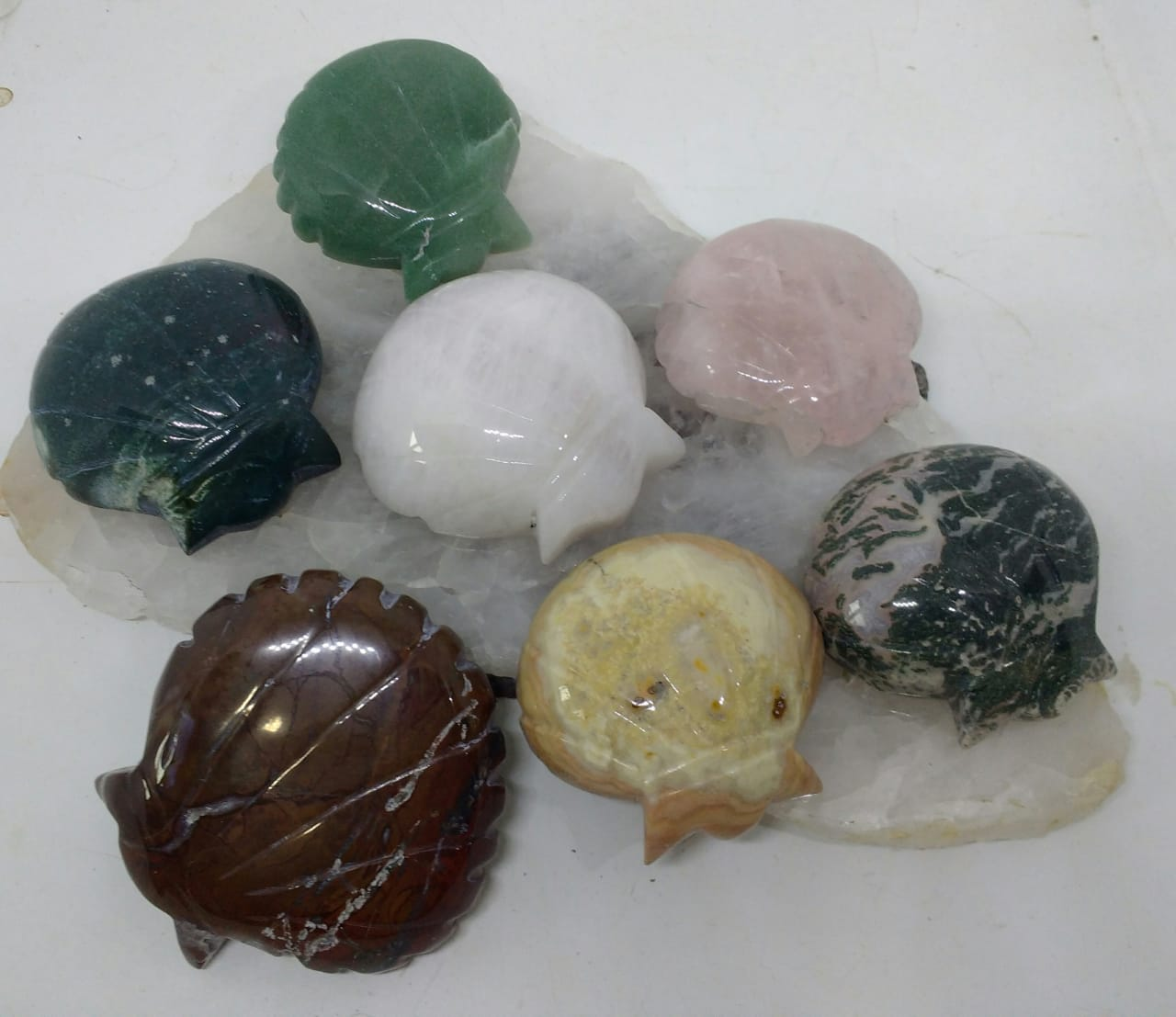 Stones from Uruguay - Gemstone Shell Shapes for Decoration, Gift and Metaphysical