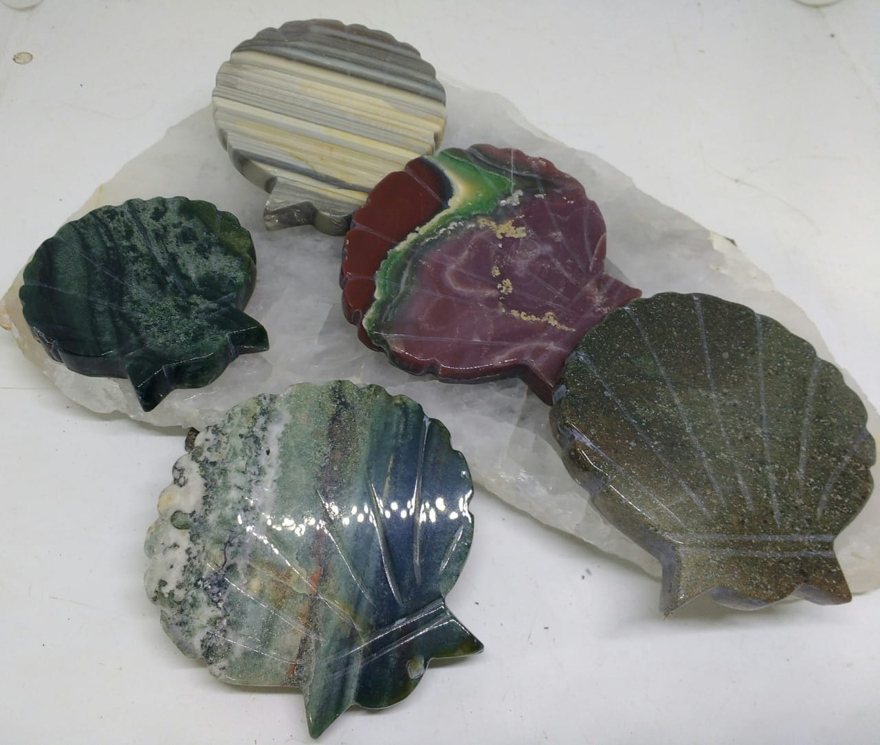 Stones from Uruguay - Jasper Shell Shapes